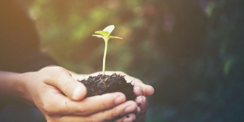 Unleash new ideas - Benefits of Personality Development Training