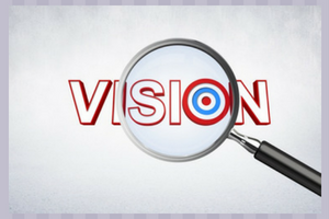 Vision or the final goal